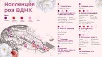 Карта цветения роз на ВДНХ